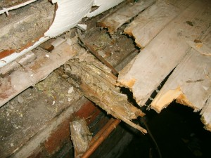 Do-It-Yourself Roofing Inspection - Dry Rot