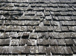 drought affects roofing